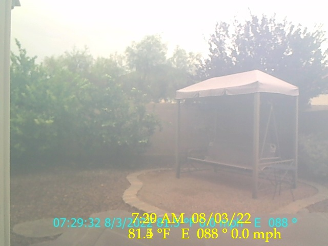 Frogville Live Cam